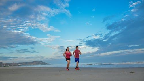 在沙滩上, 跑 的 免费素材照片