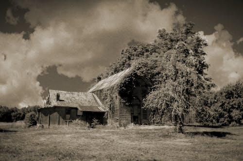 คลังภาพถ่ายฟรี ของ agbiopix, ถูกทอดทิ้ง, นา, บ้าน