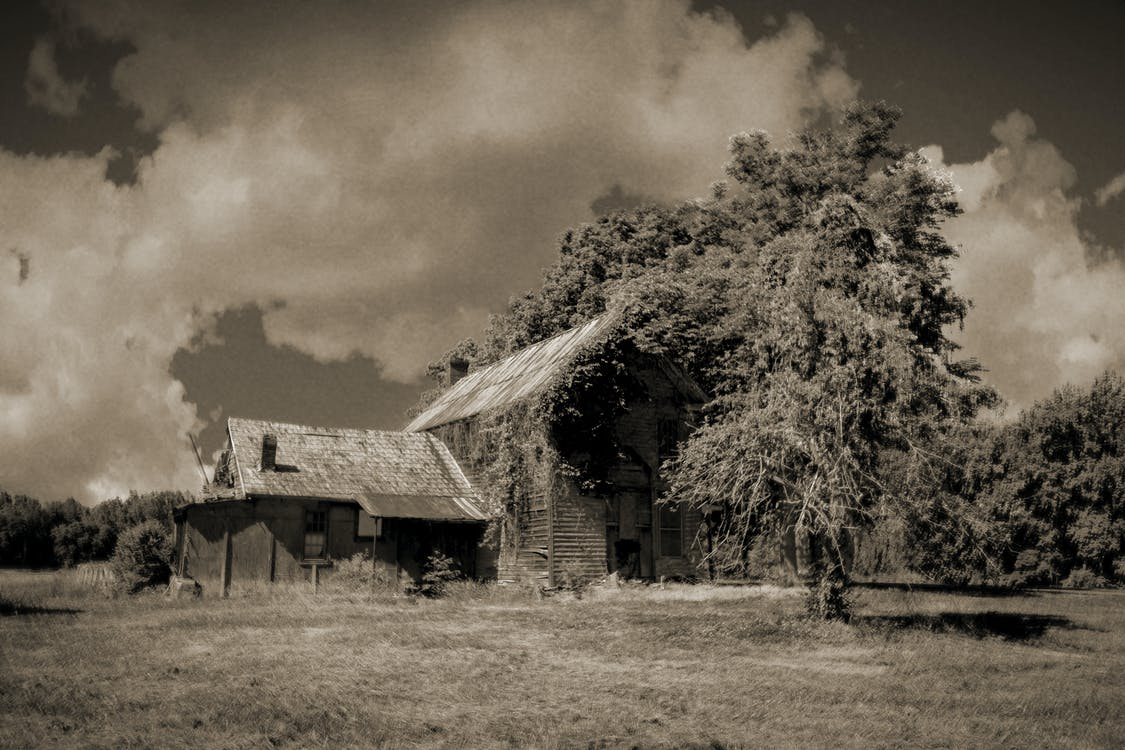 agbiopix, äldre, bondgård