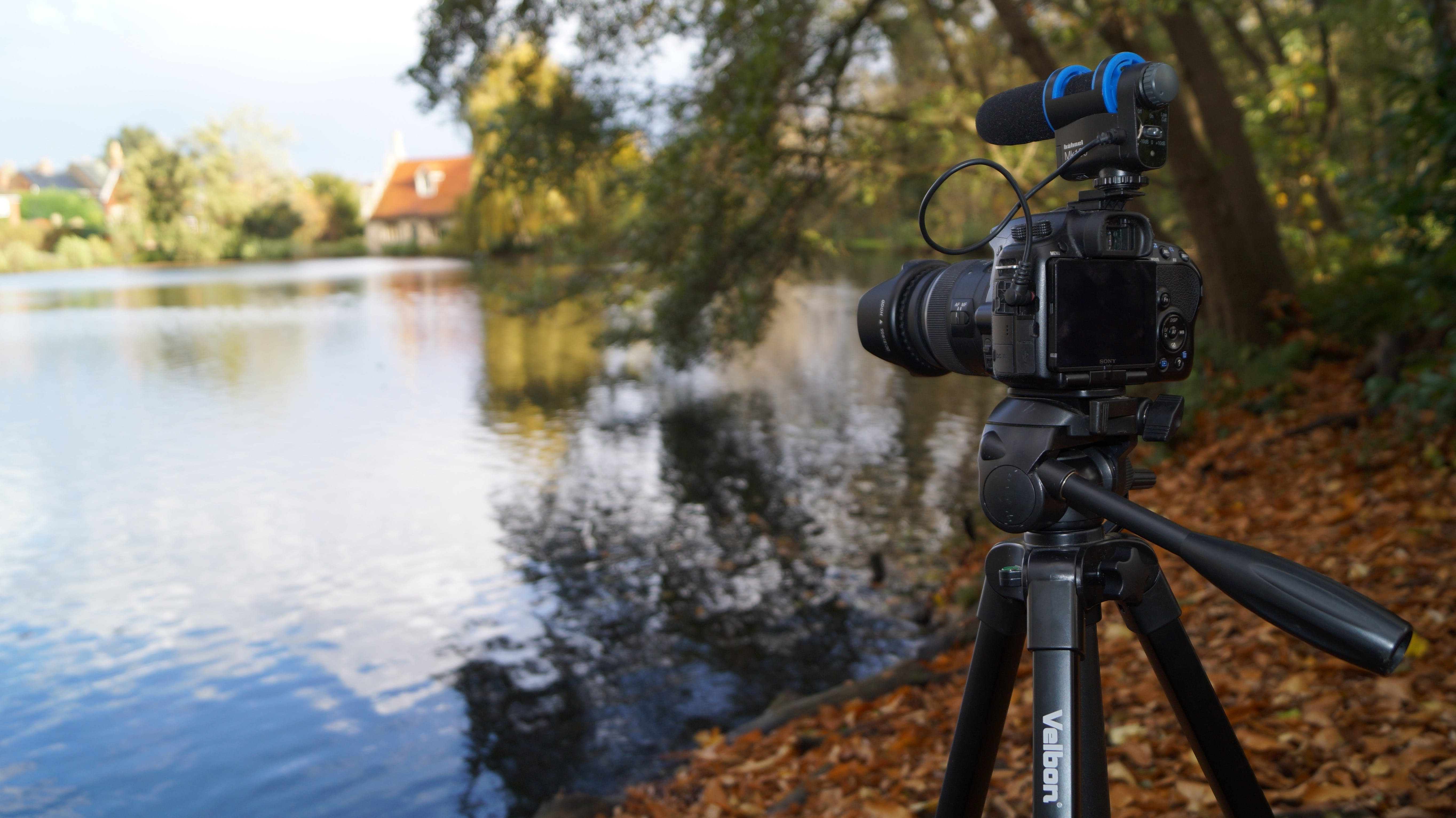 Free stock photo of water, camera, trees, lens