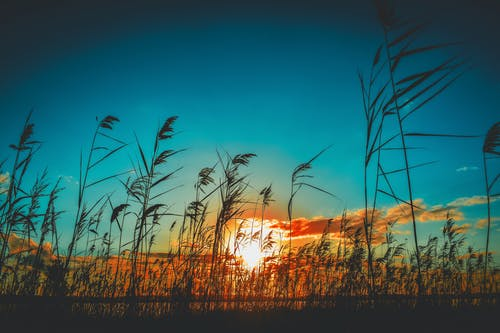 Δωρεάν στοκ φωτογραφιών με Lensball, nikon, ακτή, άμμος