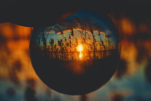 Immagine gratuita di acqua, acqua del tramonto, alba, ambiente