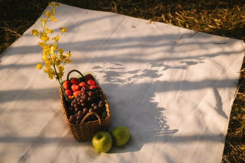 Kostnadsfri bild av äpplen, bär, blomma
