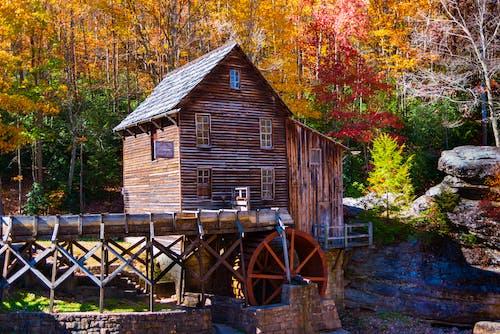 가을, 가족, 건물, 건축의 무료 스톡 사진