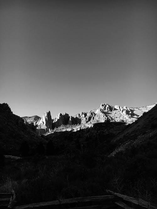 Fotobanka sbezplatnými fotkami na tému čierna a biela, denné svetlo, exteriéry, fotografia prírody