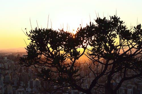 Foto stok gratis cidade, Jeruk, matahari terbenam, mirante