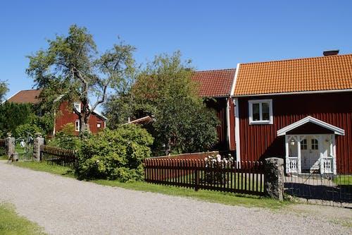 Бесплатное стоковое фото с архитектура, газон, двор, деревья