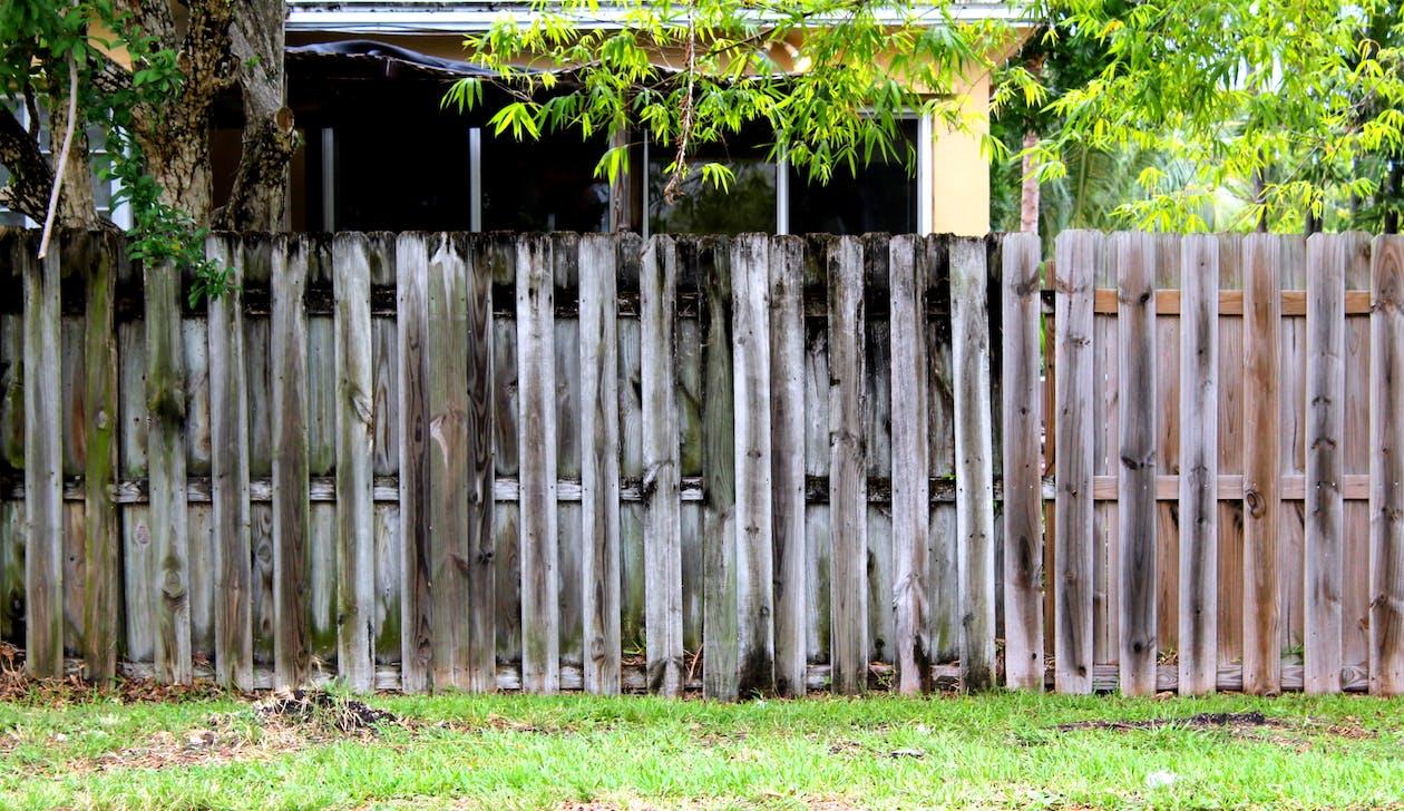 ξεβρασμένο ξύλο, ξιφασκία, περίφραξη
