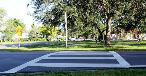 거리, 건너는, 교차로, 선의 무료 스톡 사진