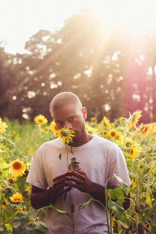 Man In White T-shirt Holding Sunflower