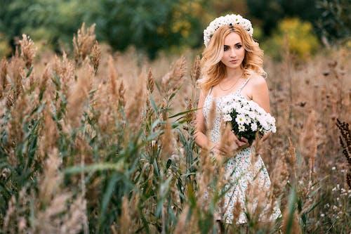 Ảnh lưu trữ miễn phí về bó hoa, cánh đồng, Chân dung, chụp ảnh