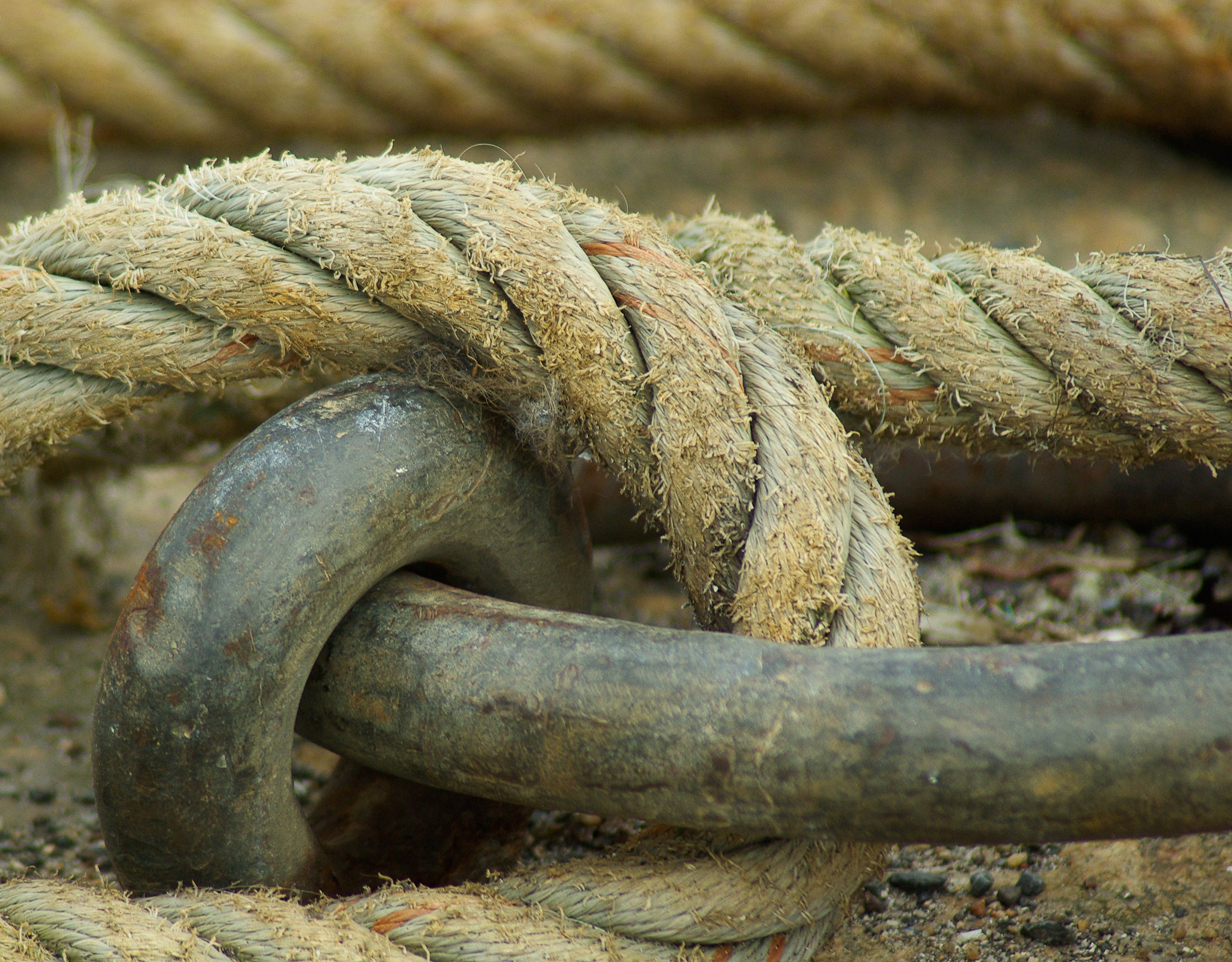 Free stock photo of boat, port, ring, rope