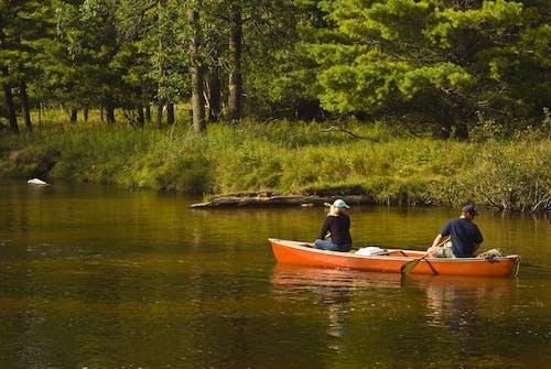 Бесплатное стоковое фото с вода, деревья, каноэ, лес