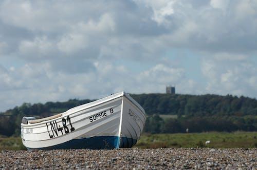 Foto d'estoc gratuïta de a l'aire lliure, arbres, barca, barca de pesca