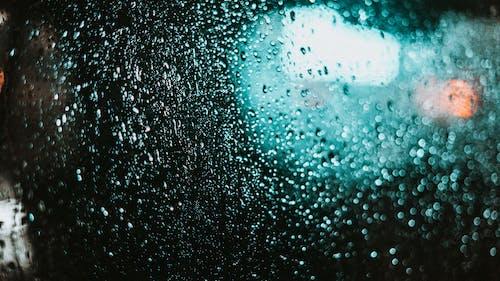 Gratis lagerfoto af efter regn, lys, nat, neon glød