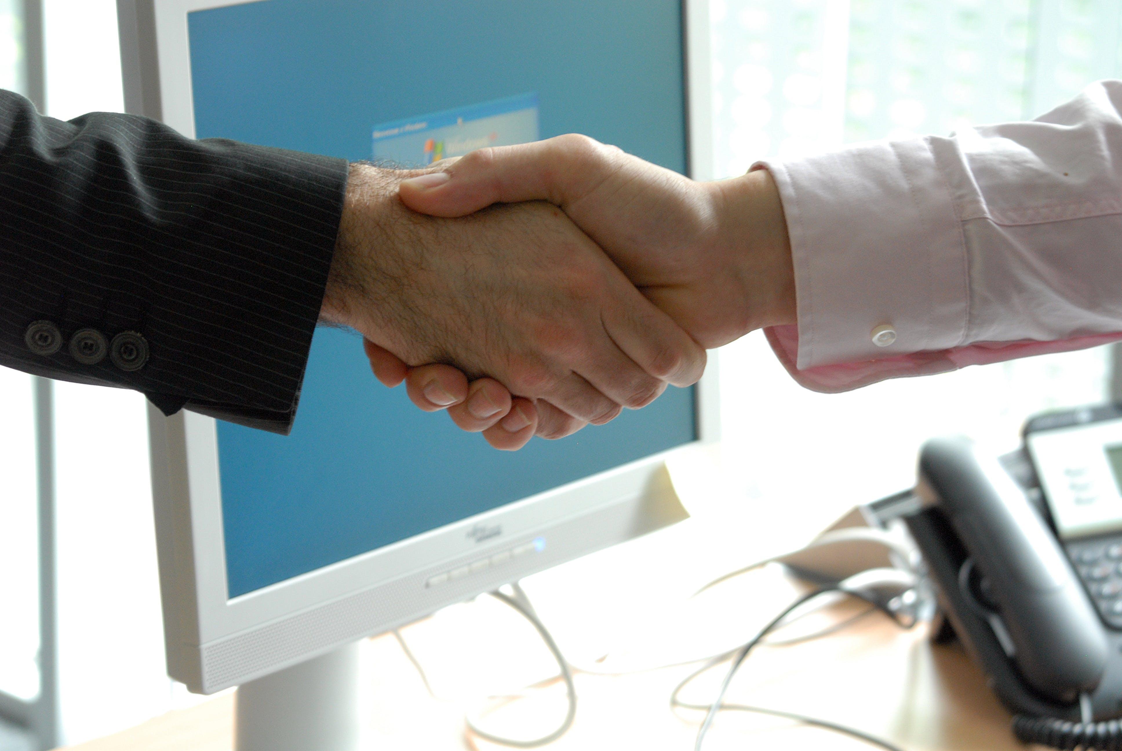 business, handshake, professional