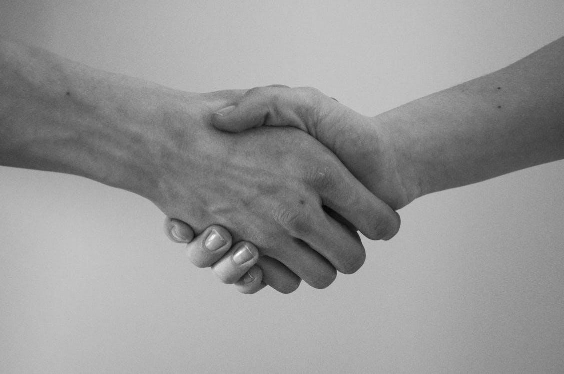 greeting, hand, hand shaking
