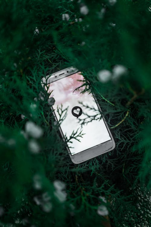 Photo of Mobile Phone On Leaves