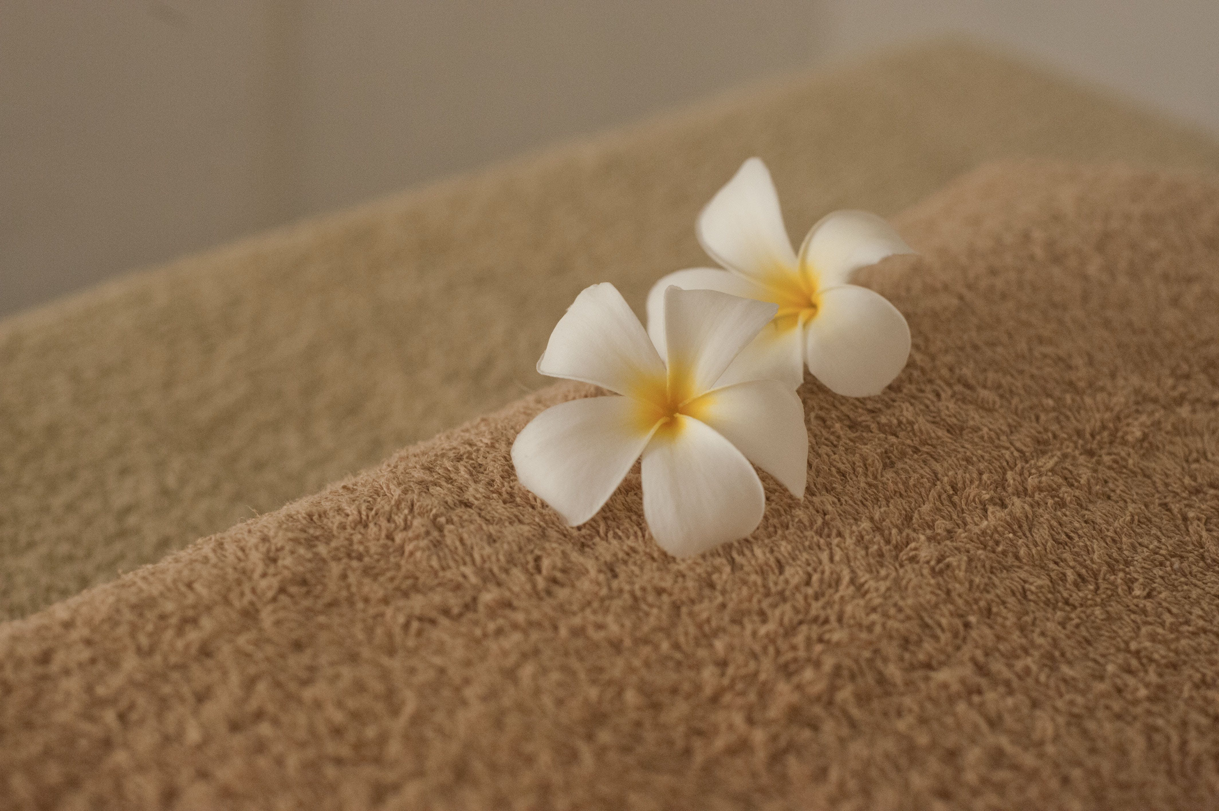 Free stock photo of massage, well-being, beauty center