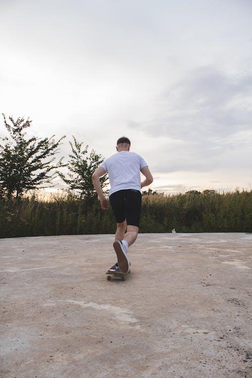 Бесплатное стоковое фото с закат, зерновое поле, кататься на коньках, поле