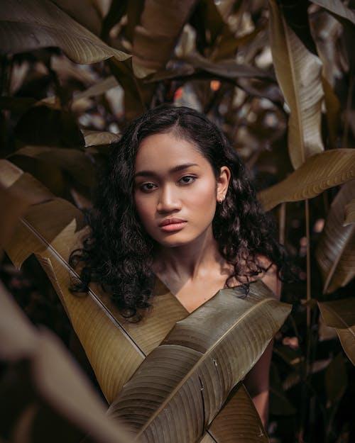 Immagine gratuita di bellezza, bellissimo, donna, foglie