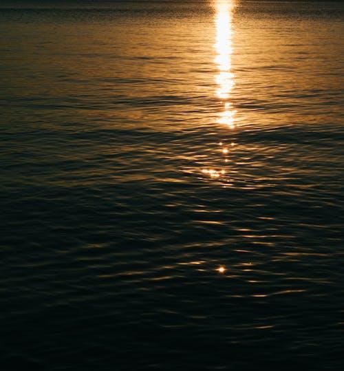 Darmowe zdjęcie z galerii z światło słoneczne