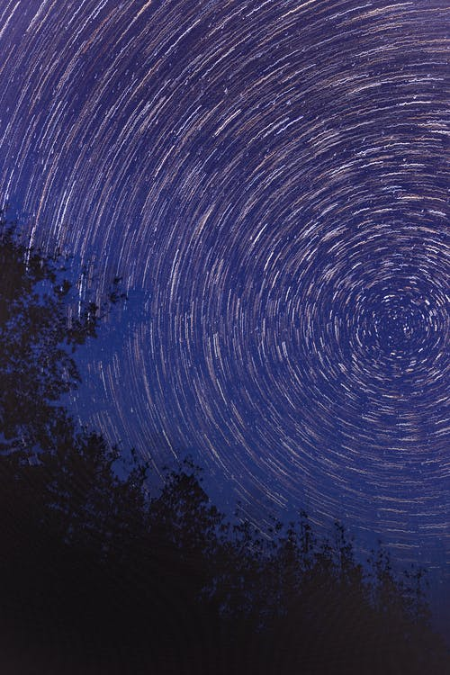Foto profissional grátis de árvores à noite, céu, céu estrelado, estrelas
