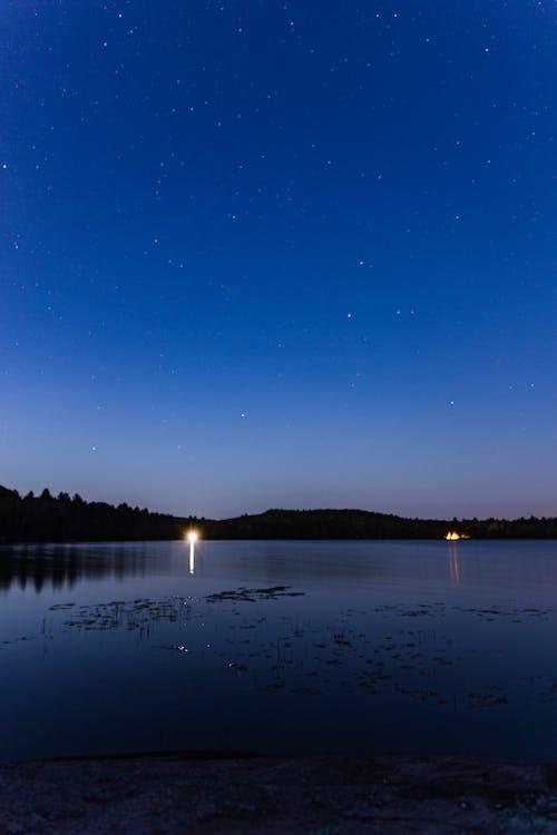 Gratis lagerfoto af aften, nat, silhouet
