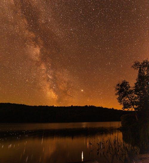 คลังภาพถ่ายฟรี ของ ซิลูเอตต์, ดวงดาว, ดาวเต็มฟ้า, ทะเลสาป