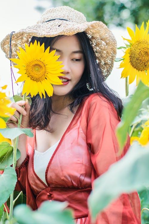Δωρεάν στοκ φωτογραφιών με 人像, 北京, 向日葵, 夏天