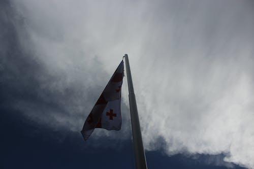 Imagine de stoc gratuită din cer albastru, cerul orașului, Georgia, înflorit