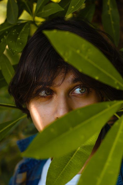 Free stock photo of asia, beautiful, bloom, eyes