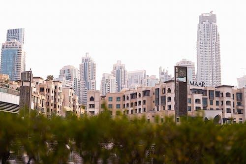 Безкоштовне стокове фото на тему «архітектурний, Дубай, дубай центр»