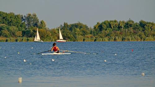 Gratis arkivbilde med båt, innsjø, konkurranse, opplæring