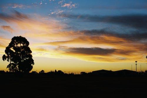 ballarat, 구름, 나무, 노란색의 무료 스톡 사진