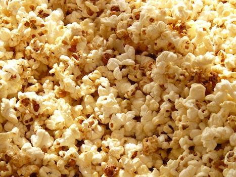 Free stock photo of corn, eat, sweet, snack