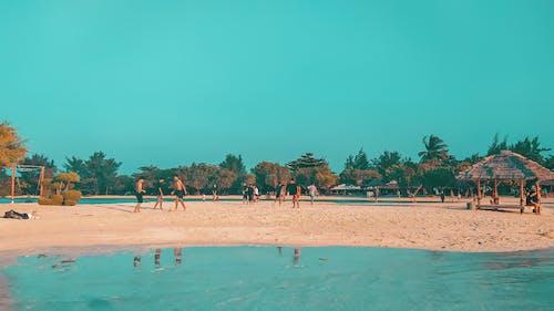 คลังภาพถ่ายฟรี ของ bgstrkj, potrait, ชายหาด, ทะเล
