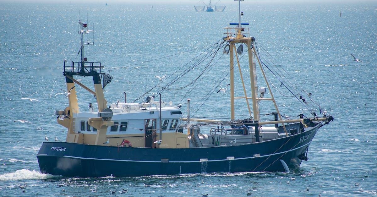 позволь типы рыболовных судов фото каких примерах