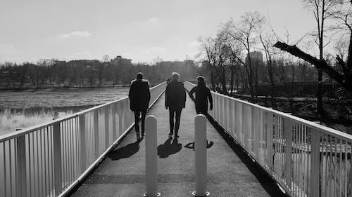 Ảnh lưu trữ miễn phí về 3 chàng trai, bạn bè, bạn bè đi bộ, cầu nguyện