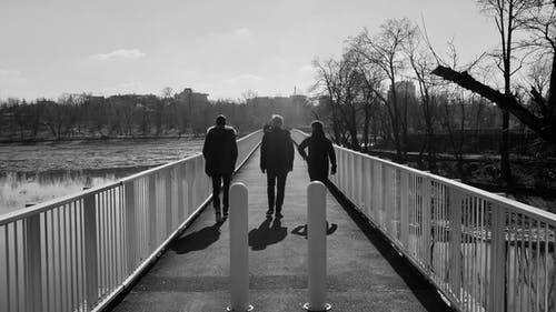 Photos gratuites de 3 garçons, amis, amis marchant, brigde