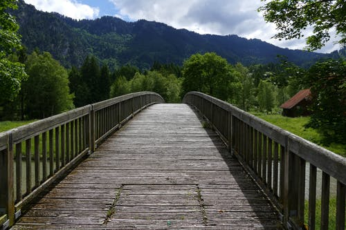 Landscape Photo of Wooden Bridge