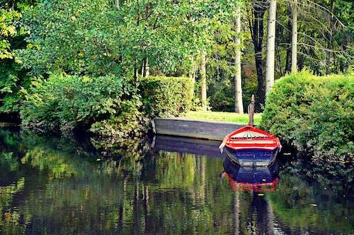 休息, 公園, 划艇, 反射 的 免费素材照片