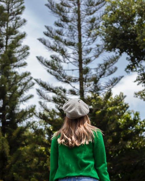 Безкоштовне стокове фото на тему «берети, дерева, жінка, капелюх»