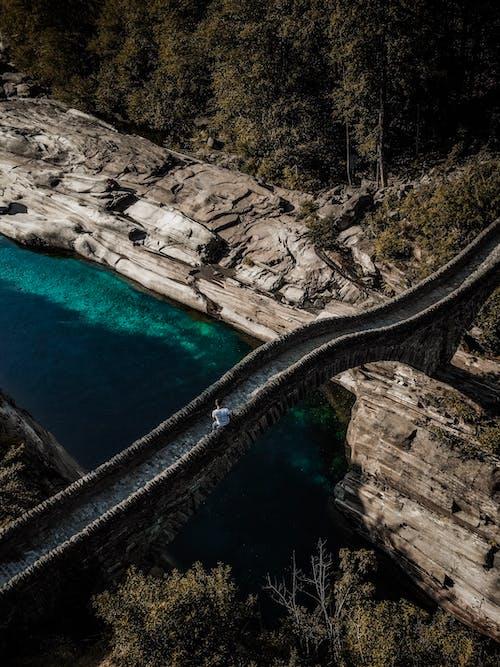 Foto d'estoc gratuïta de a l'aire lliure, aigua, arbres, carretera