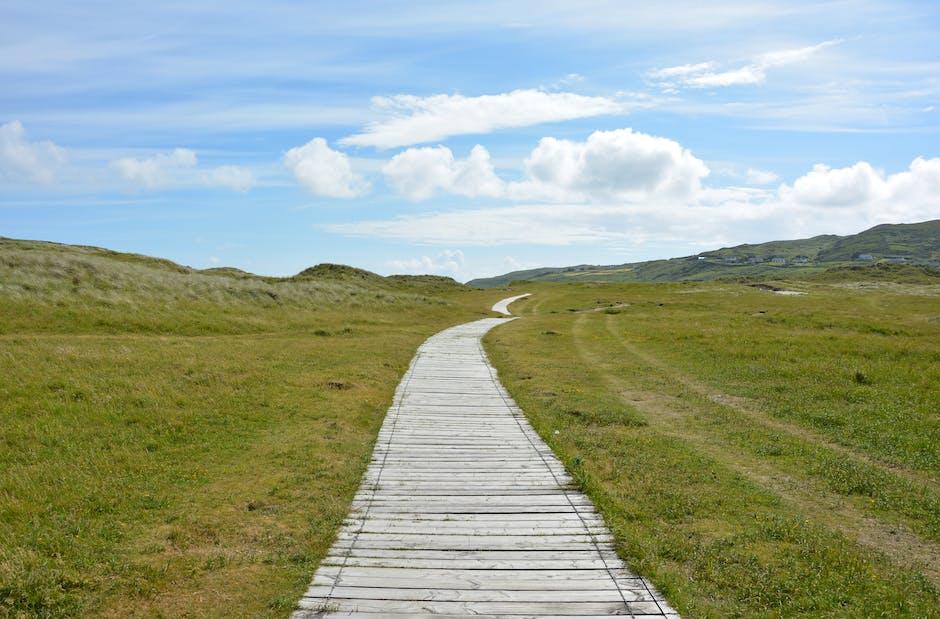 Gray Pathway in Between Grasses