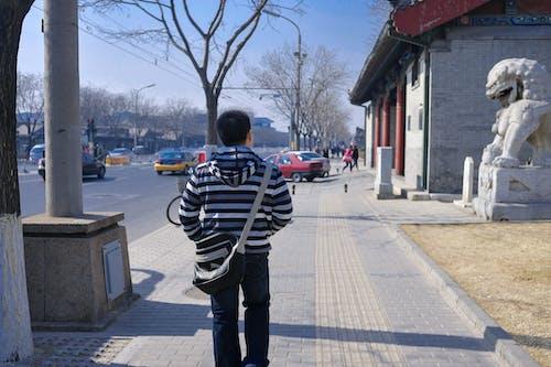 北京, 男子, 通りの無料の写真素材
