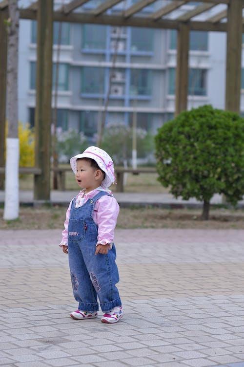 子, 左を見て, 赤ちゃんの無料の写真素材