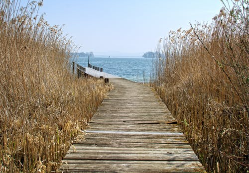 Brown Wooden Dock Above Body of Water