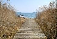wood, jetty, sea