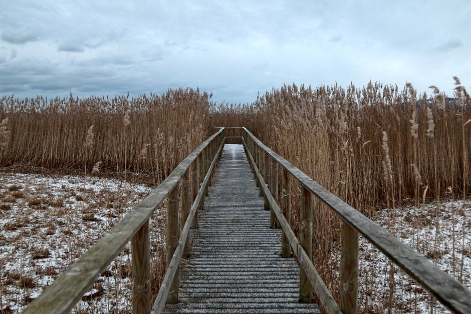 boardwalk, cold, country
